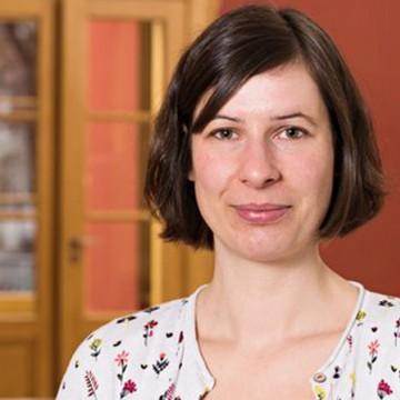 Strategien gegen Gentrifizierung - Vortrag und Diskusssion mit Lisa Vollmer | Vernetzung Süd